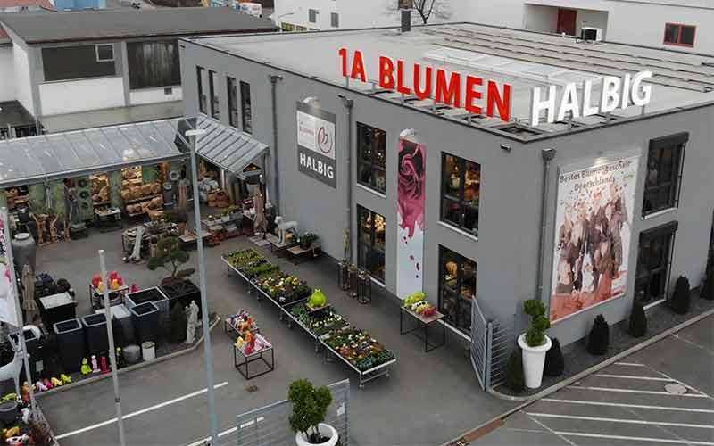 1a-blumen-halbig-standorte-nuernberg-teaser